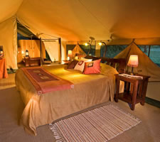 Governors Camp in Kenya